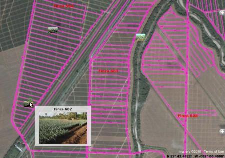 размер поля, мониторинг в буларуси, измерить поле, измерить участок земли